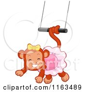 Circus Monkey Swinging From A Trapeze