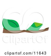 Flat Green Sandals Clipart Picture