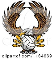 Bald Eagle Flying With A Volleyball In Its Talons