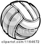 Standard Volleyball