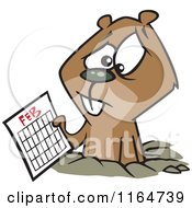 Cartoon Of A Distressed Groundhog Holding A February Calendar Royalty Free Vector Clipart by Ron Leishman