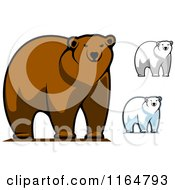 Clipart Of Brown And Polar Bears 3 Royalty Free Vector Illustration by Vector Tradition SM