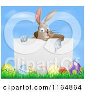 Cartoon Of A Brown Bunny Pointing To A Sign Over Easter Eggs Royalty Free Vector Clipart