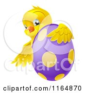 Cartoon Of A Chick Hugging A Polka Dot Easter Egg Royalty Free Vector Clipart by AtStockIllustration