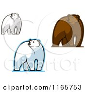 Clipart Of Glancing Bears Royalty Free Vector Illustration