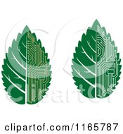 Clipart Of Green Computer Motherboard Circuit Leaves Royalty Free Vector Illustration