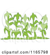 Cartoon Of A Row Of Green Corn Stalks Royalty Free Vector Clipart by LaffToon