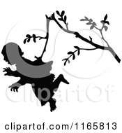Silhouetted Girl Hanging From A Branch