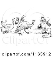 Clipart Of A Retro Vintage Black And White Fox Turkey And Birds Royalty Free Vector Illustration by Prawny Vintage