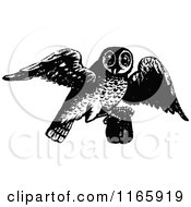 Clipart Of A Retro Vintage Black And White Owl Flying With A Pourch Royalty Free Vector Illustration