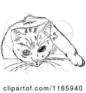 Clipart Of A Retro Vintage Black And White Cat 6 Royalty Free Vector Illustration