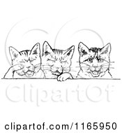 Clipart Of A Retro Vintage Black And White Cat Border Royalty Free Vector Illustration