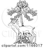 Clipart Of Retro Vintage Black And White Deer Under A Tree Royalty Free Vector Illustration by Prawny Vintage