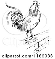 Clipart Of A Retro Vintage Black And White Rooster On A Wall Royalty Free Vector Illustration by Prawny Vintage