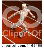 Clipart Of A Runners Body With Visible Skeleton And Muscles On A Track Royalty Free CGI Illustration