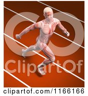 Clipart Of A Runners Body With Visible Muscles On A Track Royalty Free CGI Illustration
