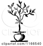 Retro Vintage Black And White Potted Tree