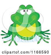Grinning Green Frog