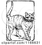 Clipart Of A Retro Vintage Black And White Cat Royalty Free Vector Illustration