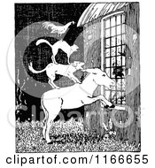 Clipart Of A Retro Vintage Black And White Stacked Animals Peeking In A Window Royalty Free Vector Illustration