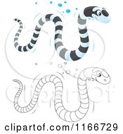 Cartoon Of An Outlined And Colored Banded Sea Kraits Snake Royalty Free Vector Clipart by Alex Bannykh