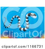 Cartoon Of A Banded Sea Kraits Snake Over Corals Royalty Free Clipart by Alex Bannykh