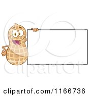 Cartoon of a Peanut Character with a Sign - Royalty Free Vector Clipart by Hit Toon