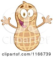 Cartoon of a Happy Peanut Character - Royalty Free Vector Clipart by Hit Toon