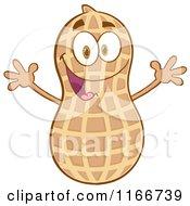 Happy Peanut Character