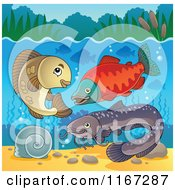 Cartoon Of River Fish Underwater 2 Royalty Free Vector Clipart