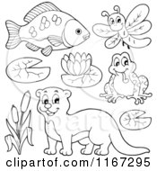 Cartoon Of An Outlined Fish Dragonfly Frog Otter And River Plants Royalty Free Vector Clipart by visekart
