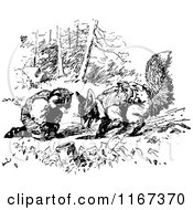 Clipart Of A Retro Vintage Black And White Digging Fox And Raccoon Royalty Free Vector Illustration by Prawny Vintage