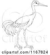 Cartoon Of An Outlined Sarus Crane Bird Royalty Free Vector Clipart
