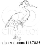 Cartoon Of An Outlined Standing Heron Royalty Free Vector Clipart