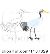 Cartoon Of A Colored And Outlined Sarus Crane Bird Royalty Free Vector Clipart