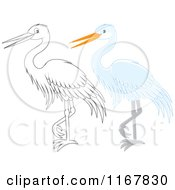 Cartoon Of A Standing Outlined And White Heron Or Egret Royalty Free Vector Clipart