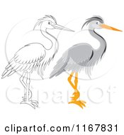 Cartoon Of A Colored And Outlined Standing Gray Heron Royalty Free Vector Clipart