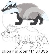 Cartoon Of A Cute Outlined And Colored Badger Walking In Profile Royalty Free Vector Clipart by Alex Bannykh