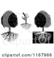 Clipart Of Black And White Trees And Roots Royalty Free Vector Illustration by Vector Tradition SM