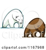 Clipart Of Polar And Brown Bears Royalty Free Vector Illustration by Vector Tradition SM
