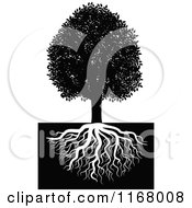 Clipart Of A Black And White Tree And Roots 2 Royalty Free Vector Illustration by Vector Tradition SM