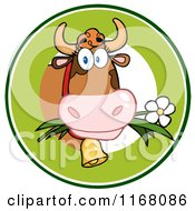 Cow Eating A Daisy Flower In A Green Circle