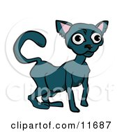 Russian Blue Cat Clipart Illustration