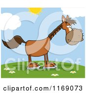 Cartoon Of An Old Brown Horse On A Hill Royalty Free Vector Clipart