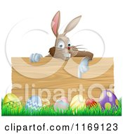 Brown Easter Bunny Pointing Down At A Wood Sign Over Eggs In Grass