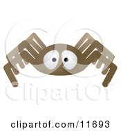 Brown Spider Clipart Illustration by AtStockIllustration