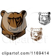Clipart Of Brown And Black And White Kodiak Bear Heads Royalty Free Vector Illustration
