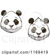 Happy Giant Panda Faces