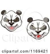 Clipart Of Aggressive Giant Panda Faces Royalty Free Vector Illustration by Vector Tradition SM