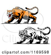 Clipart Of Roaring Aggressive Tigers Royalty Free Vector Illustration